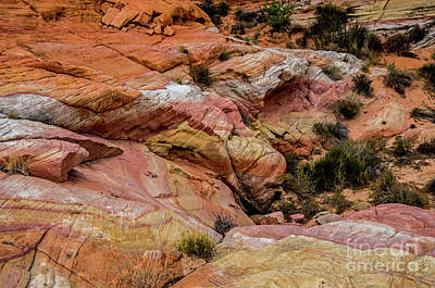 Photograph - Depth Of The Canyon by Stephen Whalen