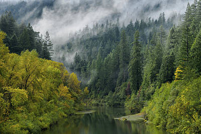 Photograph - Depths Of The Autumn Eel by Greg Nyquist