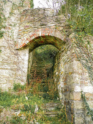 Photograph - Derelict Arch And Steps At Abandoned New Quay Tamar Valley by Richard Brookes