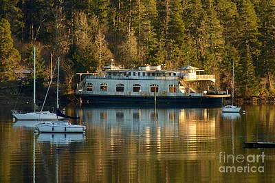 Photograph - Derelict Ferry by Sean Griffin