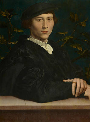 Painting - Derich Born by Hans Holbein the Younger