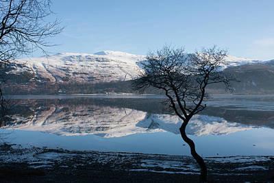 Photograph - Derwentwater Tree View by Peter Walkden