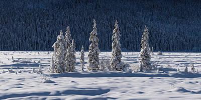 Beautiful Photograph - Des Merveilles D'hiver by Dustin LeFevre