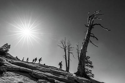 Photograph - Descent From Sentinel Dome by Davorin Mance