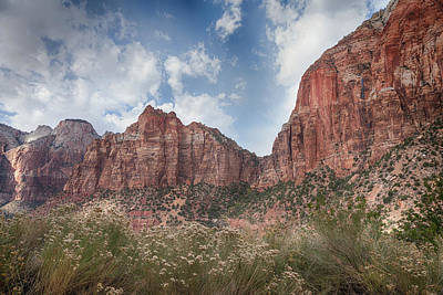 Photograph - Descent Into Zion by John M Bailey