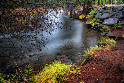 Photograph - Deschutes In The Rain by Cat Connor