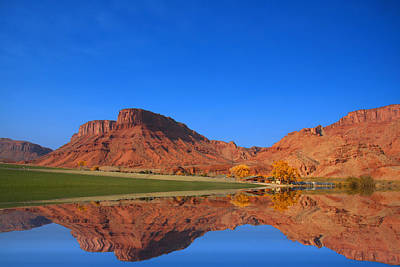 Photograph - Deser Reflections by Mark Smith