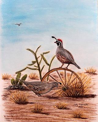 Desert Art Gambels Quail Art Print by Judy Filarecki