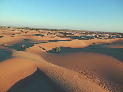 Photograph - Desert Awakening 2 by Pema Hou