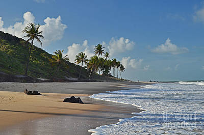 Photograph - Desert Beach - Brazil - Coqueirinho - Paraiba by Carlos Alkmin
