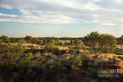 Photograph - Desert Beauty by Sandy Molinaro