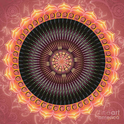 Digital Art - Desert Bloom Mandala by Elizabeth Alexander