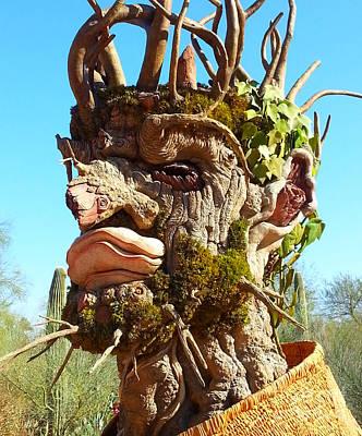 Luminaria Photograph - Desert Cactus Man by Tap On Photo