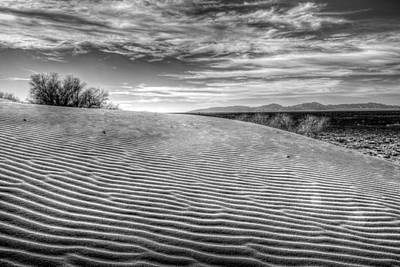 Photograph - Desert Contrasts by JC Findley