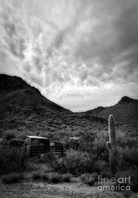 Photograph - Desert Corral by Lee Craig