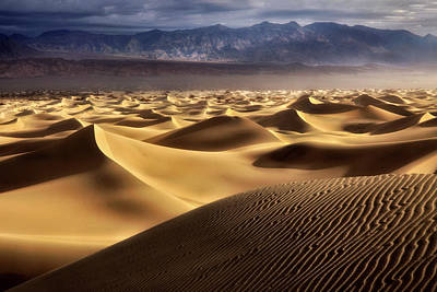 Photograph - Desert Curves by Nicki Frates