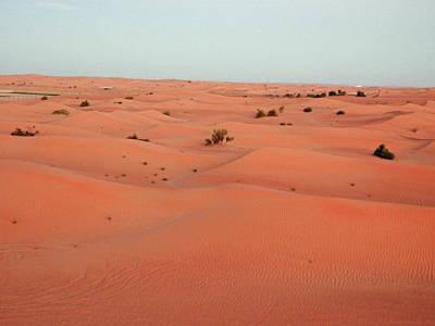 Photograph - Desert Dawn by Pema Hou