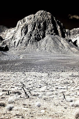 Photograph - Desert Dimenstions by John Rizzuto