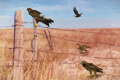 Painting - Desert Eagles - Painting by Ericamaxine Price