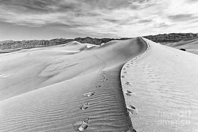 Desert Feet Art Print by Jamie Pham