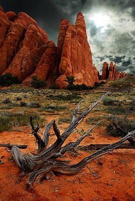 Photograph - Desert Floor by Harry Spitz