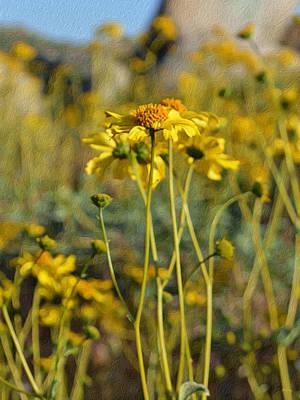 Digital Art - Desert Flower Impressions One - Wild Sunflowers by Glenn McCarthy Art and Photography