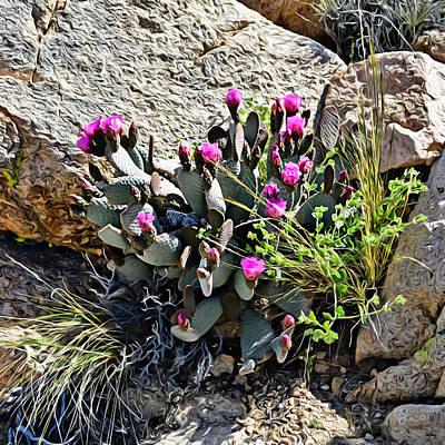 Digital Art - Desert Flower Impressions Three - Cactus Blooms by Glenn McCarthy Art and Photography