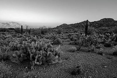 Mark Myhaver Rights Managed Images - Desert Foothills h30 Royalty-Free Image by Mark Myhaver
