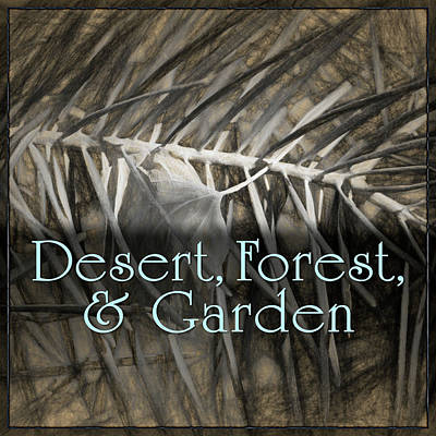 Digital Art - Desert - Forest - Garden by Becky Titus