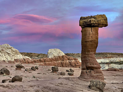 Escalante Photograph - Desert Forms by Leland D Howard