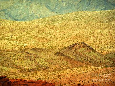 Photograph - Desert Glory by Angela L Walker