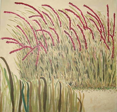 Desert Grasses Art Print by Wendy Peat