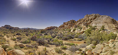 Photograph - Desert High by Chris Reed