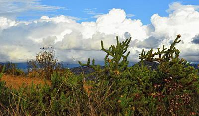 Photograph - Desert Hill Country by Glenn McCarthy