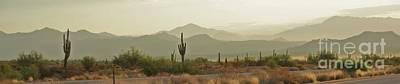 Photograph - Desert Hills by Julie Lueders