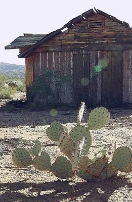 Desert Home Art Print