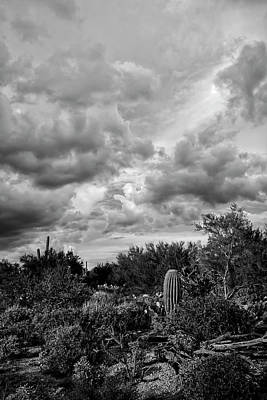 Mark Myhaver Rights Managed Images - Desert In Clouds v15 Royalty-Free Image by Mark Myhaver