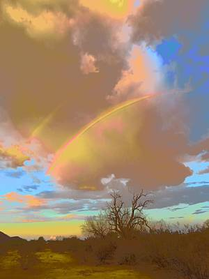 Photograph - Desert Ironwood And Double Rainbows 2 by Judy Kennedy