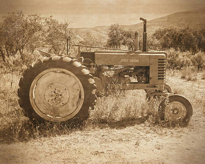 Agricultural Photograph - Desert Johnny Sepia by David King