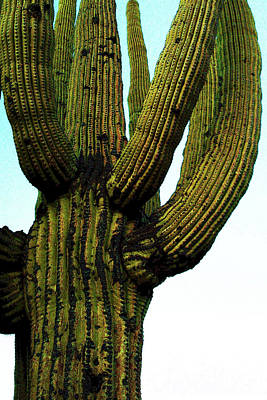 Saguaro Painting - Desert King by Alexandria Winslow