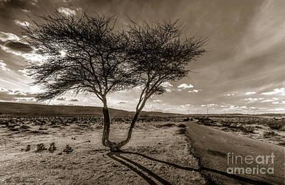 Photograph - Desert Landmarks  by Arik Baltinester