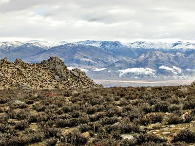 Photograph - Desert Landscape by Marilyn Diaz
