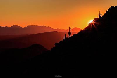 Photograph - Desert Light by Rick Furmanek