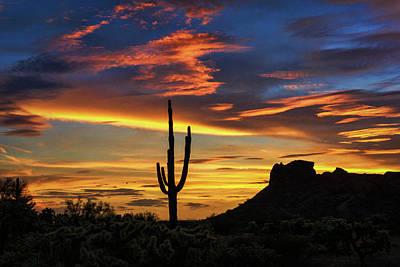 Photograph - Desert Light  by Saija Lehtonen
