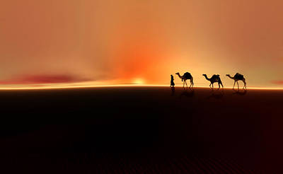 Photograph - Desert Mirage by Valerie Anne Kelly