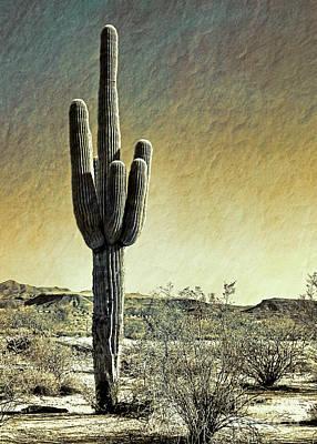 Photograph - Desert Mood Arizona by Gabriele Pomykaj