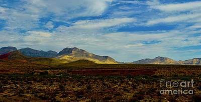 Photograph - Desert Morning by Craig Wood