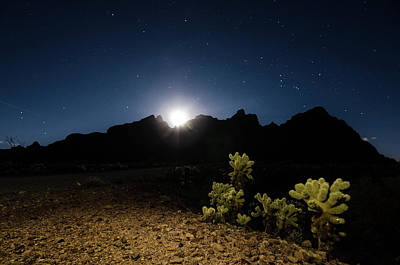 Photograph - Desert Nightfall by Margaret Pitcher
