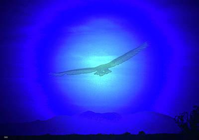 Birds In Flight At Night Digital Art - Desert Nights by Debra     Vatalaro