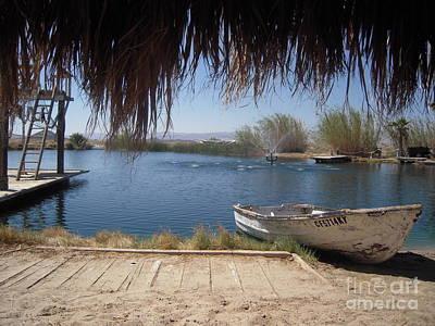 Desert Oasis Original